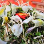 Đi du lịch Mộc Châu thưởng thức nộm hoa ban
