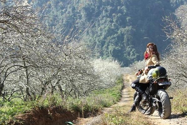 Du lịch Mộc Châu dịp cuối năm