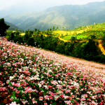 Hà Giang – một thiên đường du lịch