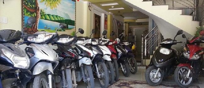 Các loại xe máy đa dạng có thể thuê tại nhà nghỉ